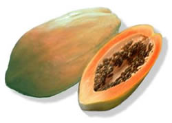 La Generosa Papaya